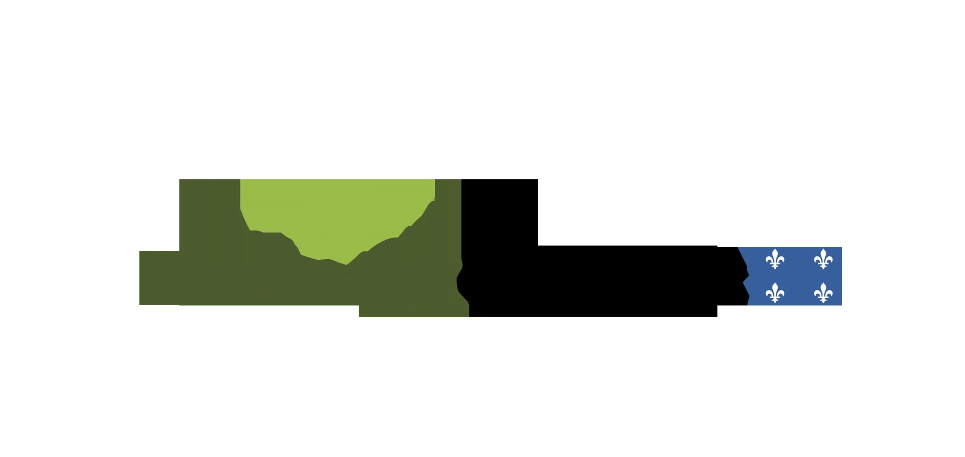 Fonds_vert